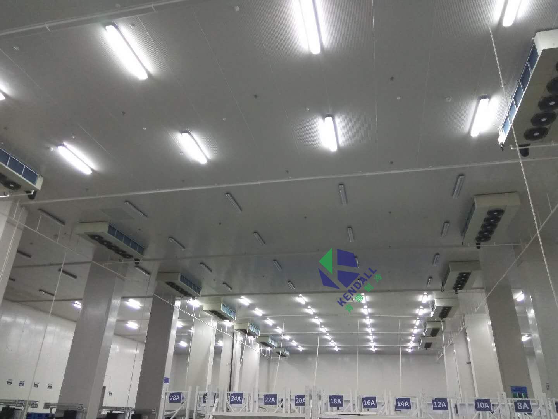 上海顺凯物流11000平方米冷库