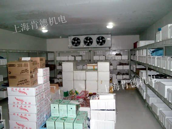 上海凯茂生物医药大型医药冷库项目